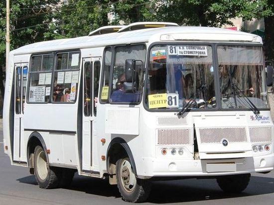 В Костроме автобус №81 изменит маршрут
