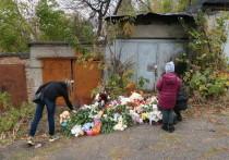 Новый поворот в деле об убийстве Лизы Киселёвой: подтверждаются предположения о сексуальном насилии