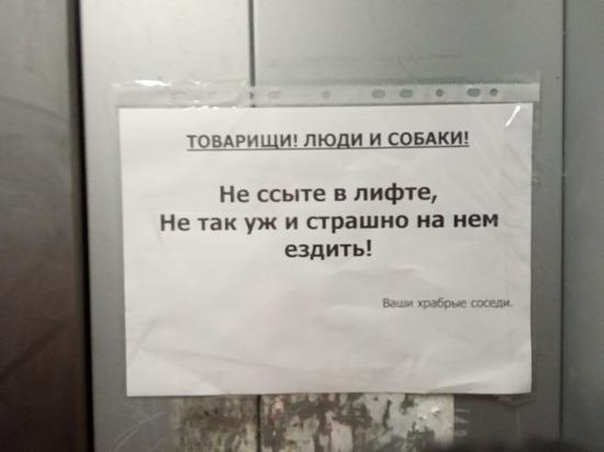 В Пскове в подъезде многоэтажки появилось забавное обращение к хулиганам