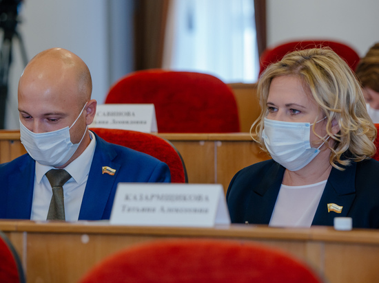 Законодательное Собрание поддержало предложение ЛДПР по продлении и индексации регионального маткапитала