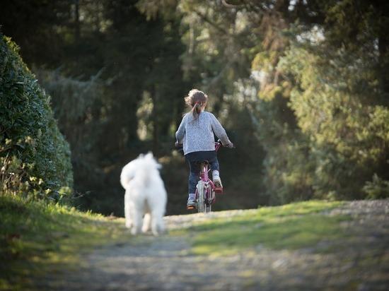 В Смоленске искали 11-летнюю велосипедистку