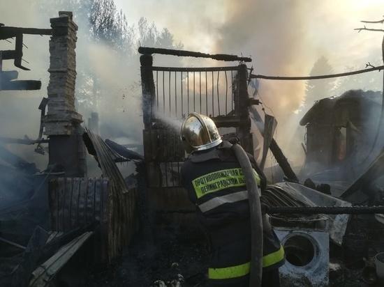 Поросенка и двух козлят спасли из горящего сарая в Ленобласти