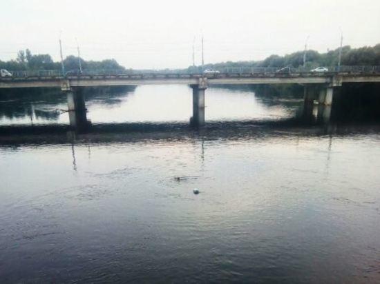 Брянец устроил марафонский заплыв по Десне от Набережной до Черного моста