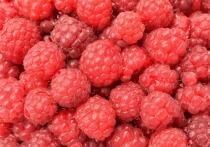 Летние ягоды, землянику и малину, совсем не обязательно мыть, это можно делать только для собственного успокоения