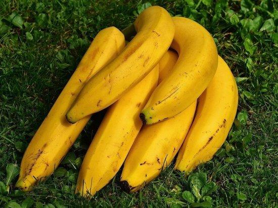 Названы продукты, которые категорически нельзя есть с бананами
