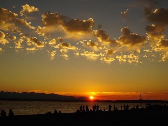 На пляже в Сиэтле обнаружили мешки с человеческими останками