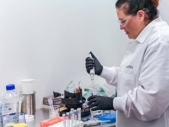 Новые исследования коронавируса в Германии: количество антител быстро снижается