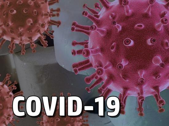 Германия: Число инфицированных Covid-19 приближается к отметке 200 тысяч человек