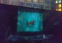 Уличные художники в Екатеринбурге устроили «борьбу с видеовирусом»