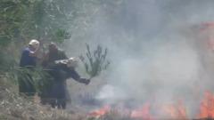 Пожарные ветками тушат загоревшуюся в Краснодаре траву