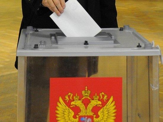 Ярославские оппозиционеры покажут своих кандидатов