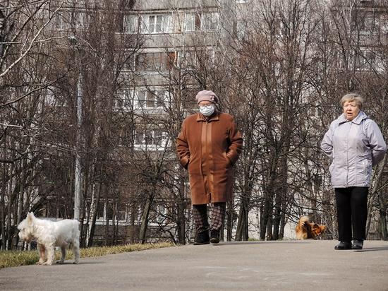 Пока законопроект на эту тему находится в Законодательном собрании Санкт-Петербурга