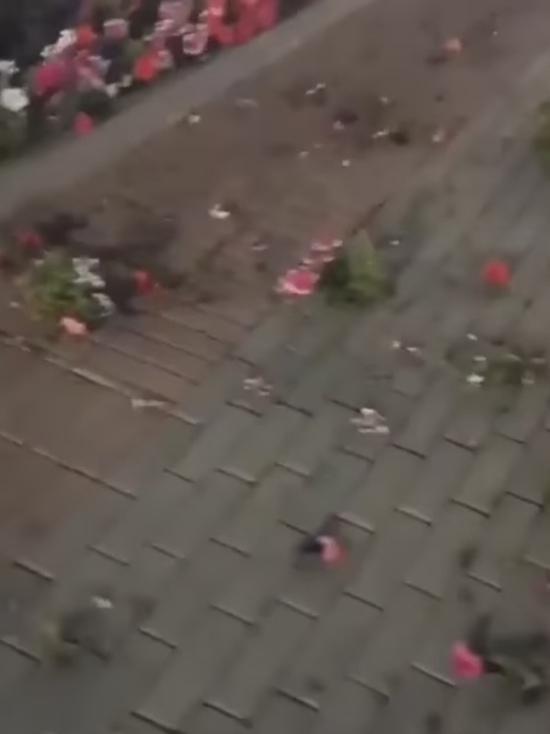 Вандалы уничтожают клумбы на Ставрополье