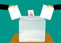 Главы муниципалитетов ЯНАО голосуют по поправкам в Конституцию РФ