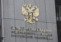 В Совфеде заявили, что США не пожалели денег на «демократизацию» России