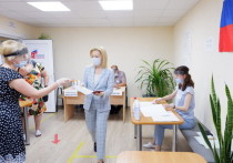 Зампред Госдумы РФ проголосовала за поправки в Конституцию в Ставрополе