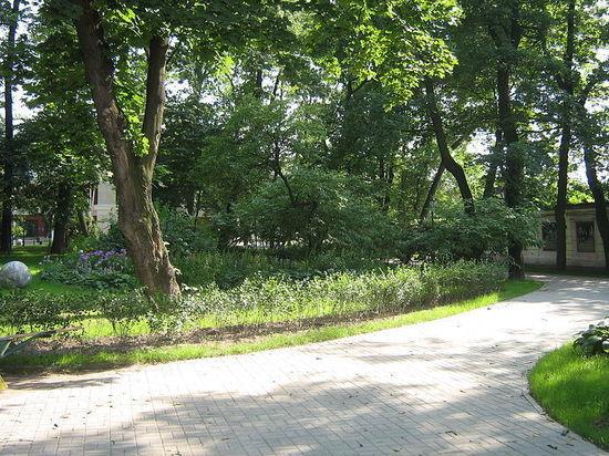 В Петербурге разрешили открыться летним кафе, паркам и детским площадкам