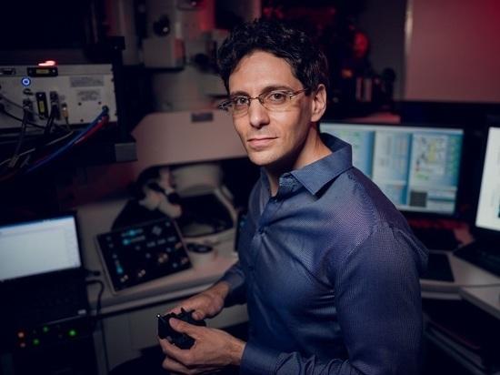 Международное исследование: ультрафиолетовый свет убийца коронавируса