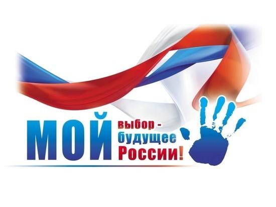 В Ставрополе объяснили правила голосования по поправкам в Конституцию