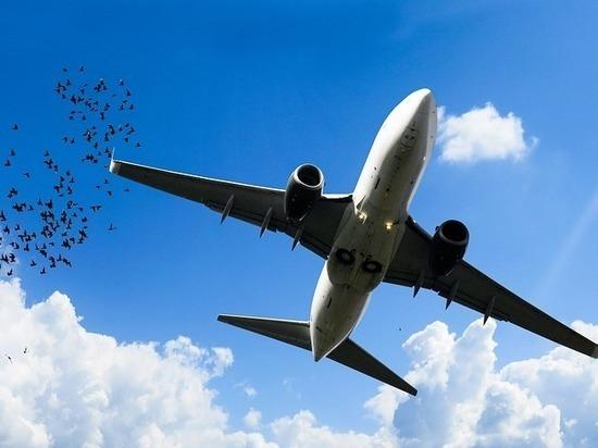 Загрузка авиарейсов из Пскова в Калининград и Анапу составила 50%