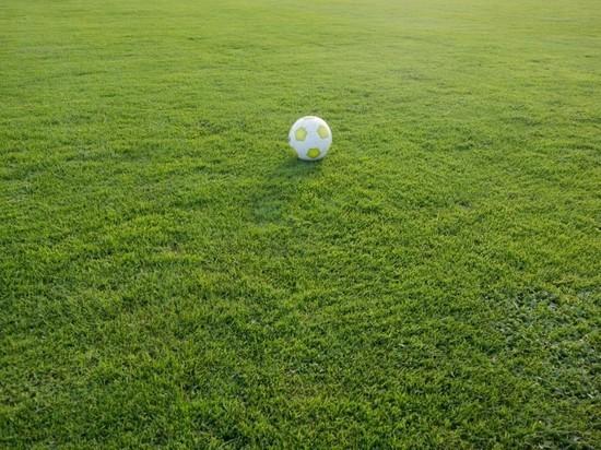 Официальный представитель футбольного клуба «Спартак-Москва» во Владимире будет проводить месяц бесплатных тренировок под открытым небом для детей 2006-2014 года рождения, сообщает региональный департамент физической культуры и спорта