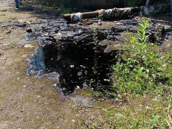 В Тепло-Огаревском районе сток канализации в поля нанес ущерб в 33.5 миллиона