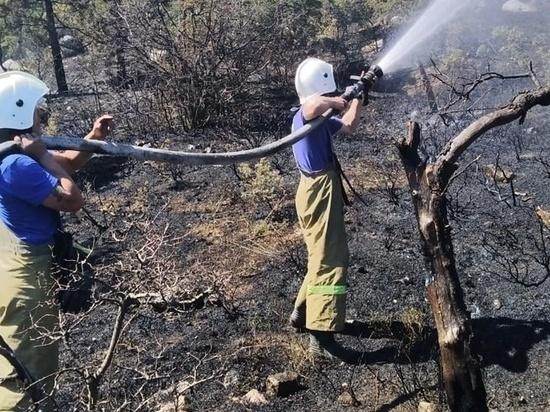 Крупный пожар под Ялтой ликвидирован