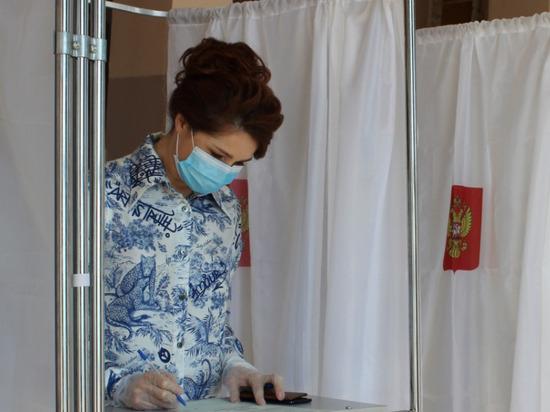 Глава Рязани проголосовала по поправкам в Конституцию