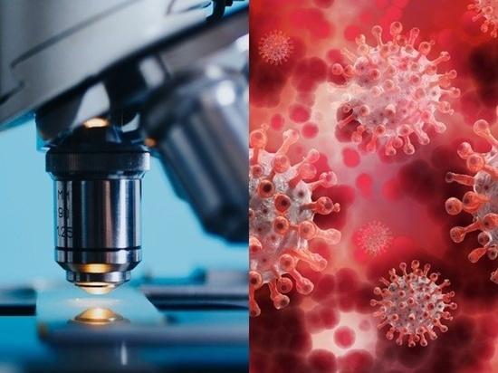 Ученые обнаружили «зловещие щупальца» у коронавируса SARS-CoV-2