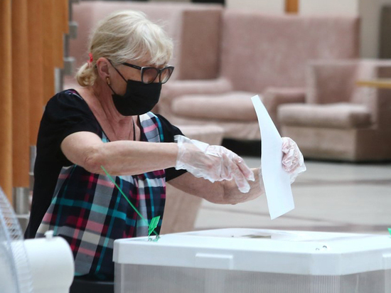 Процедура голосования по Конституции выдержала проверку на надежность