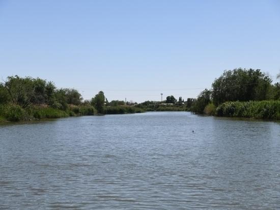 Под Волгоградом в реке нашли тело утонувшего мужчины
