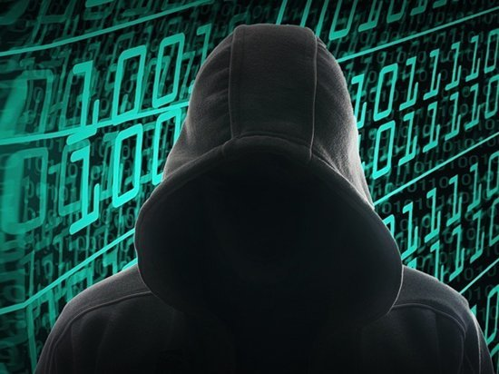 Сайт викторины «Конституция – это я!» в Приангарье подвергли серии DDoS-атак