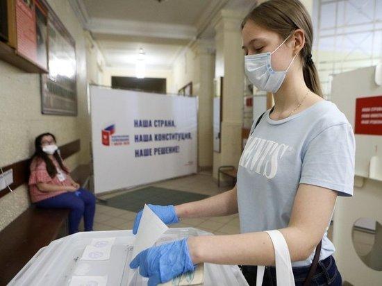 Опубликованы результаты экзитполов на электронном голосовании по поправкам в Конституцию