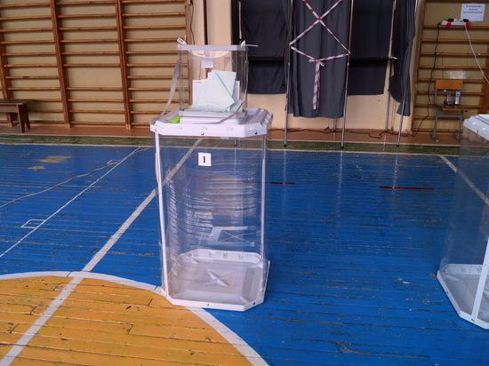 В голосовании приняла участие почти треть избирателей Марий Эл