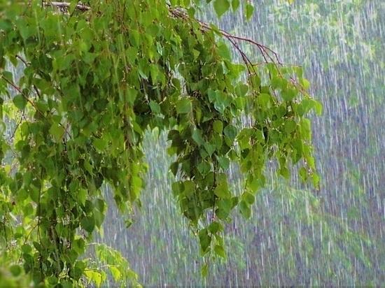Июнь в нашем городе завершится довольно прохладной погодой, сильными ветрами и осадками в виде дождей
