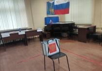 Псковская область прошла пик заболеваемости коронавирусом