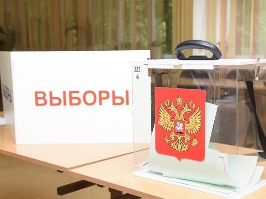 Пункты для голосования во дворах Вологды будут работать до 30 июня включительно