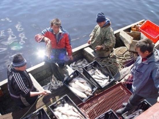 В Пуровском районе сельхозпредприятия начали рыбный промысел