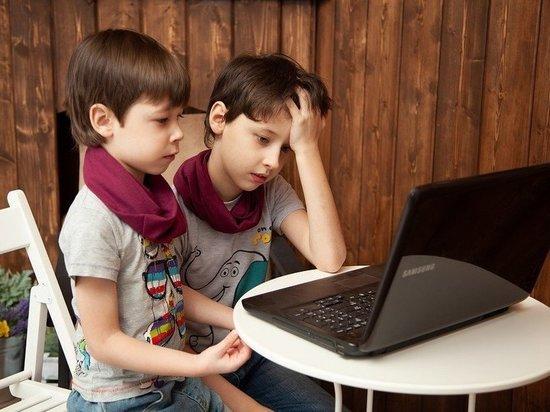 Министр образования и науки Татарстана оценил вероятность дистанционного обучения