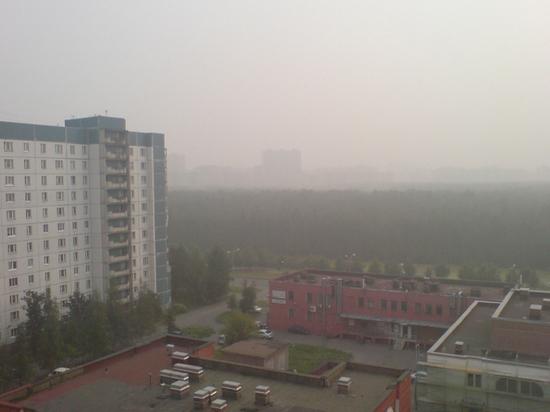 Пожар неизвестного происхождения вызвал задымление на юге Петербурга