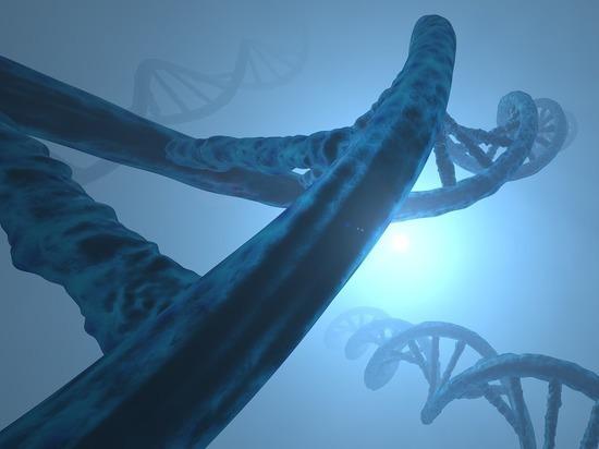 Профессор рассказал, какие гены повышают риск заболевания COVID-19