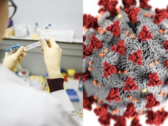 Определено количество штаммов коронавируса в России