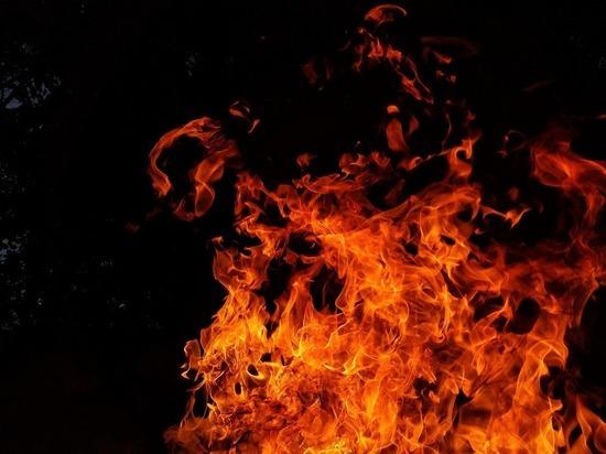На 30 июня в Магаданской области действует 69 пожаров на землях лесного фонда на площади, пройденной огнём 55 тысяч 355 гектаров, – сообщает Авиалесохрана