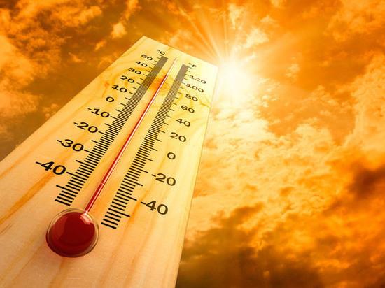 Донские синоптики рассказали о предстоящей жаре в июле