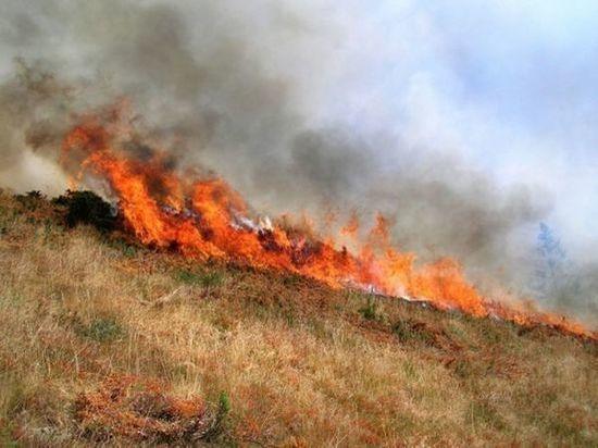 На Дону сохранится чрезвычайная пожароопасность пятого класса