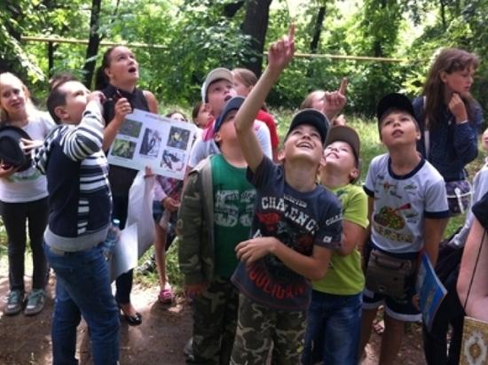 Детский летний отдых в Липецкой области станет возможен в середине июля