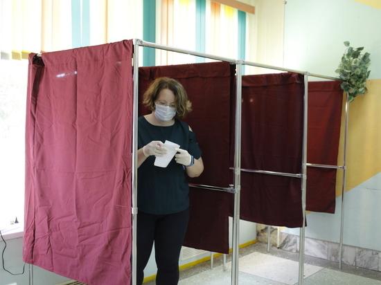 Почти 1,3 миллиона нижегородцев уже проголосовали