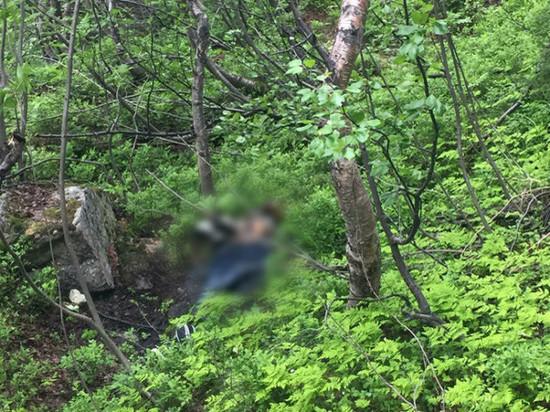 В Мурманске обнаружены останки человеческого тела