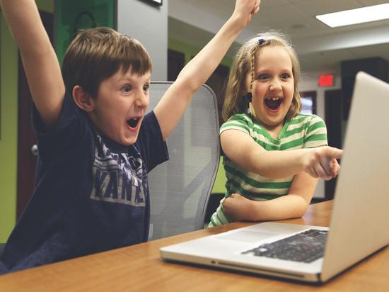 Проект траты материнского капитала на компьютеры связали с дистанционным обучением