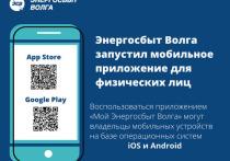 ООО «ЭСВ» внедряет новый удобный дистанционный клиентский сервис для жителей Владимирской области - мобильное приложение «Мой Энергосбыт Волга»